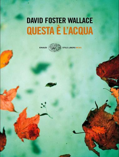 David Foster Wallace – Questa è l'acqua